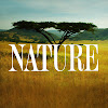 PBS自然频道 ・ Nature on PBS